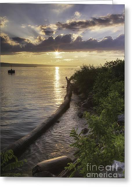 Cayuga Sunset II Greeting Card