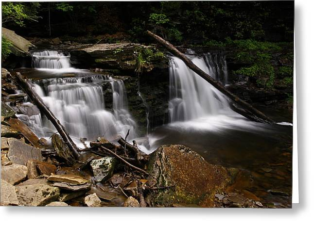 Cayuga Waterfalls Greeting Card by David Simons