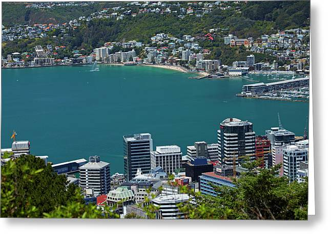 Cbd, Wellington Harbour And Oriental Greeting Card