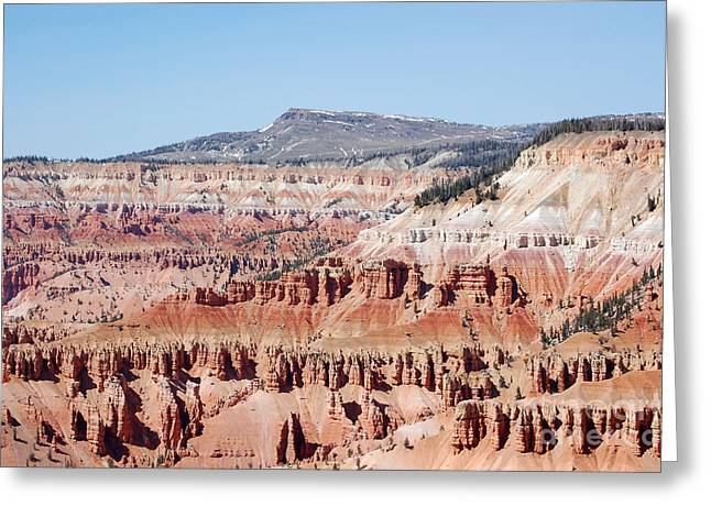 Cedar Breaks Up Close 3 Greeting Card