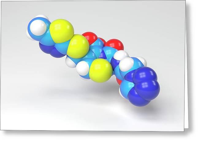 Cefazolin Molecule Greeting Card by Indigo Molecular Images