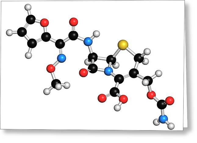 Cefuroxime Antibiotic Molecule Greeting Card by Molekuul