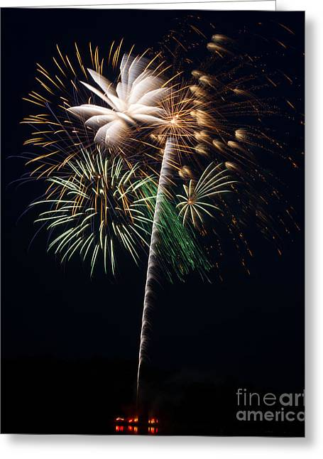 Greeting Card featuring the photograph Celebration by Dale Nelson