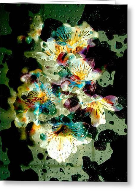 Celestial Flowers Greeting Card by Loriental Photography
