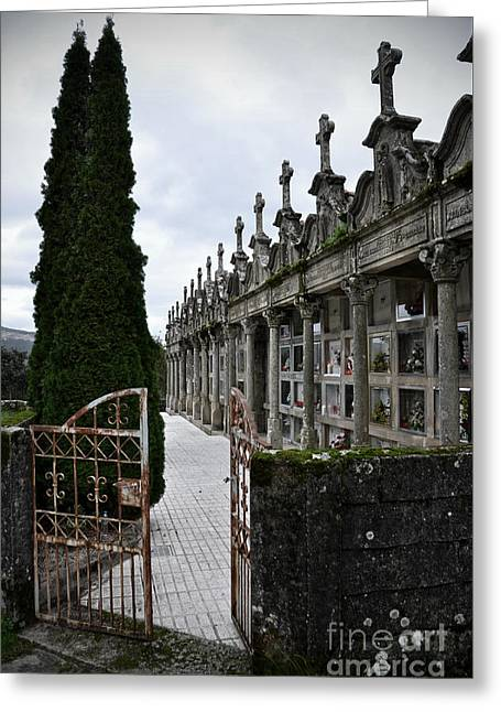 Cemetery In A Small Village In Galicia Greeting Card by  RicardMN Photography