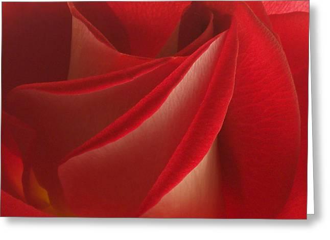 Center Folds Greeting Card