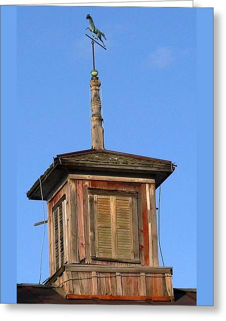 Centered Weathervane Greeting Card by Debbie Finley