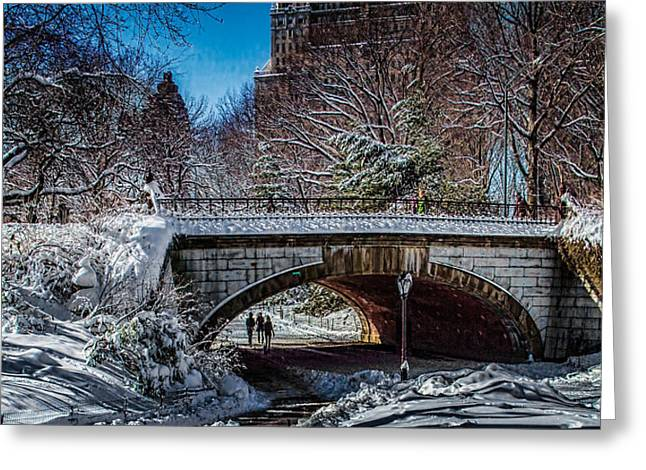 Central Park After Nemo Greeting Card by Chris Lord