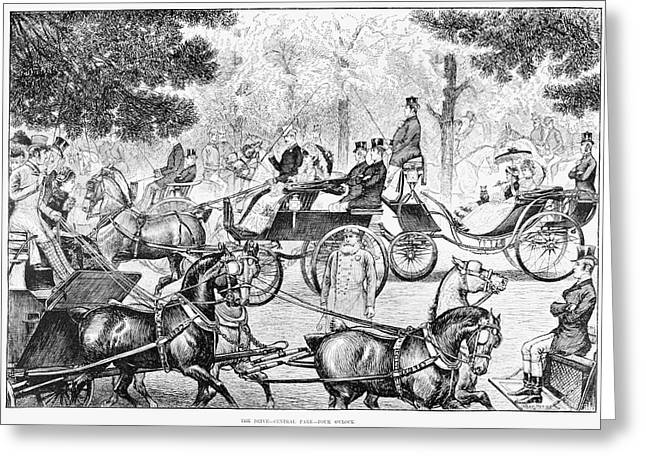 Central Park Driving Greeting Card by Granger