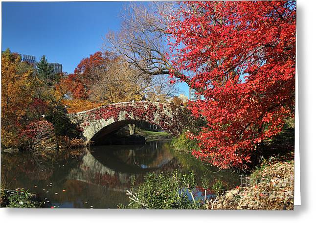 Greeting Card featuring the photograph Central Park In The Fall-1 by Steven Spak