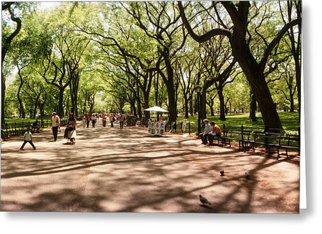 Central Park In The Spring Time, New Greeting Card by Panoramic Images