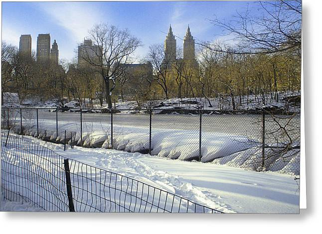 Central Park In Winter 2 Greeting Card