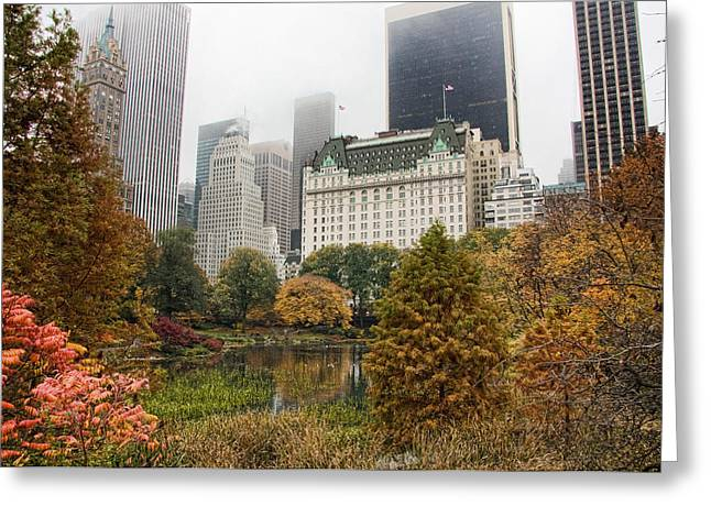 Central Park Greeting Card by June Marie Sobrito