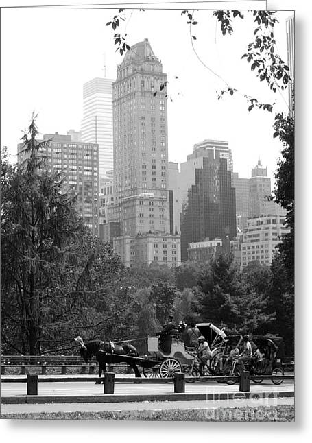 Central Park Greeting Card by Kristi Jacobsen