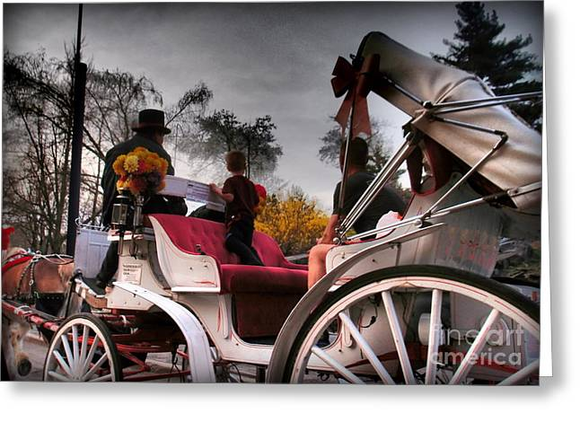 Central Park New York - Romantic Carriage Ride 2 Greeting Card by Miriam Danar