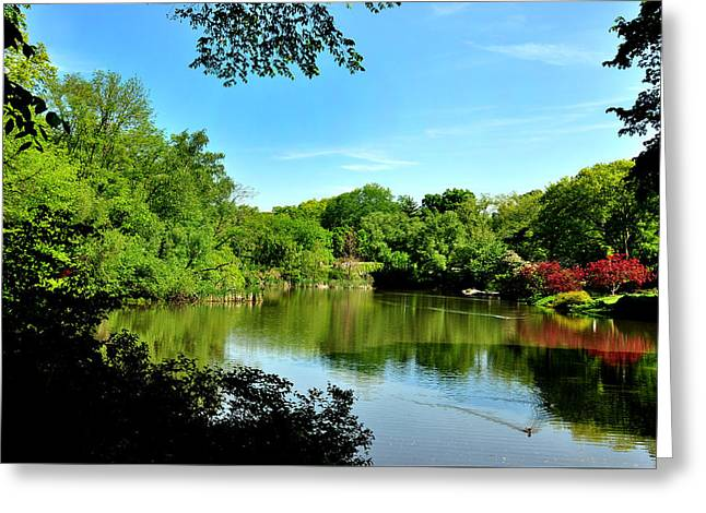Central Park No. 2 Greeting Card