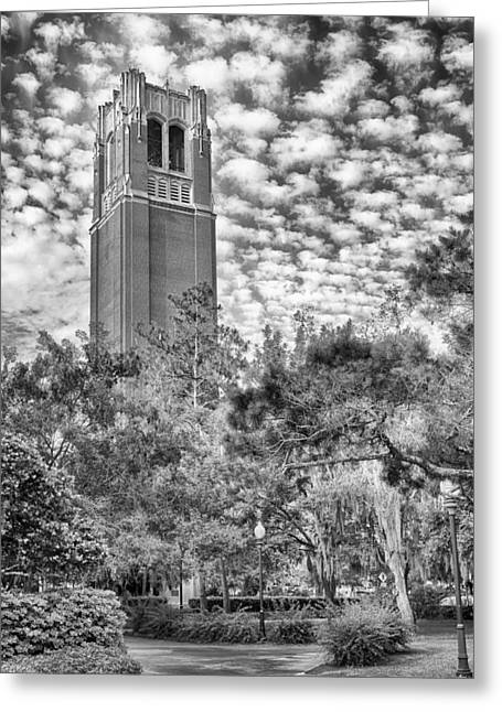 Century Tower Greeting Card by Howard Salmon