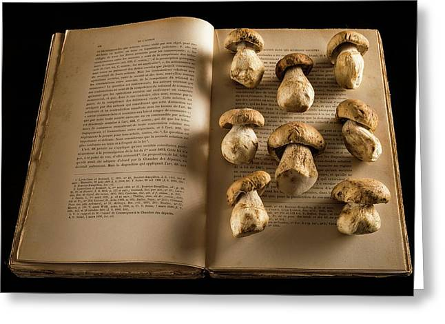 Ceps Mushrooms On An Open Book Greeting Card