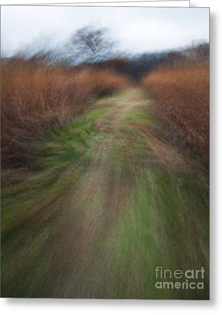 The Narrow Path - Cg10-000004 Greeting Card by Daniel Dempster