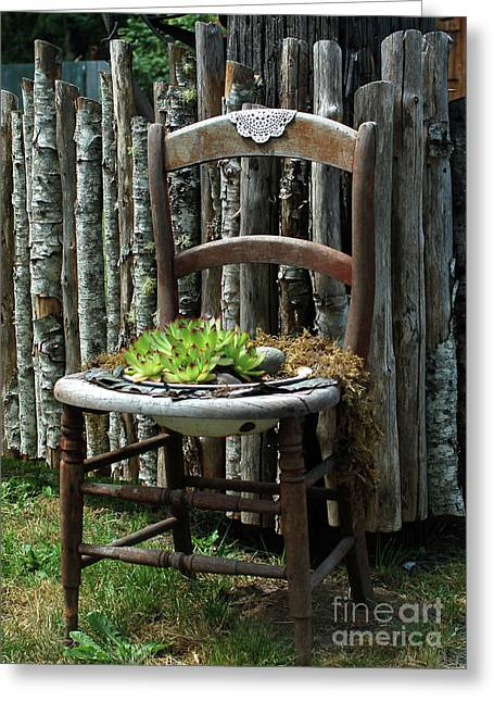 Greeting Card featuring the photograph Chair Planter by Ron Roberts
