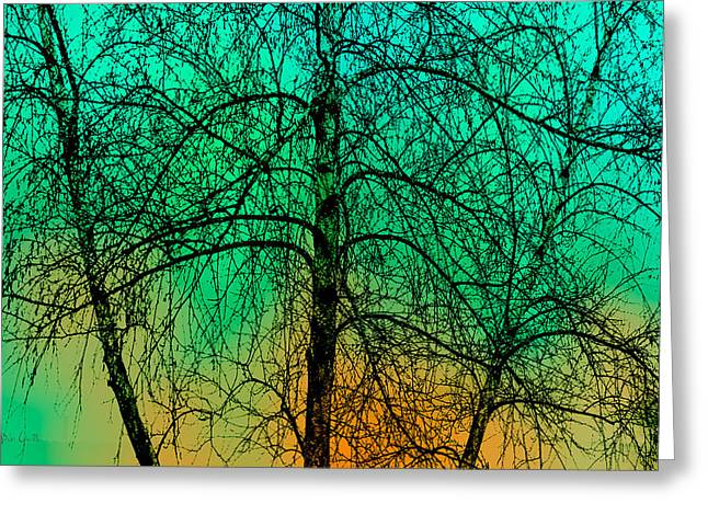 Change Of Seasons Number Tw0 Greeting Card by Bob Orsillo