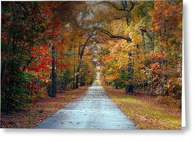 Changing Season - Autumn Landscape Greeting Card by Jai Johnson
