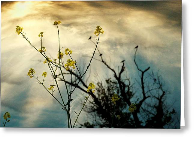 Changing Sky Greeting Card by Gothicrow Images