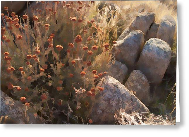 Chaparral Fall Greeting Card