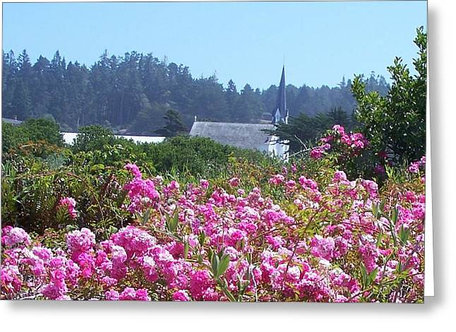 Chapel In The Field Of Flowers Greeting Card by Dianne Stopponi