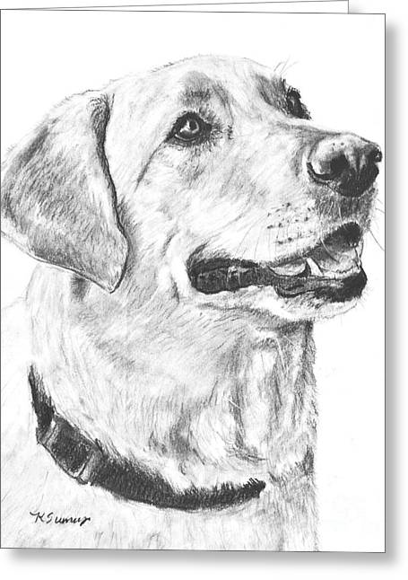 Charcoal Drawing Yellow Lab In Profile Greeting Card by Kate Sumners