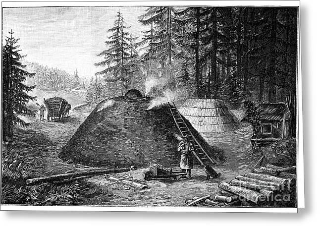 Charcoal Production, 19th Century Greeting Card by Spl