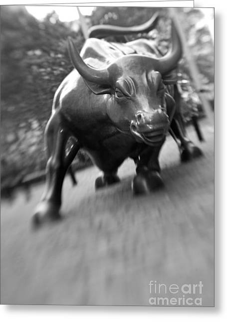 Charging Bull 2 Greeting Card by Tony Cordoza