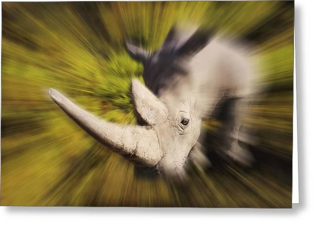 Charging Rhinocerosafrica Greeting Card by Thomas Kitchin & Victoria Hurst