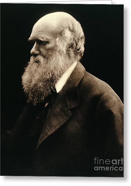 Charles Darwin By Julia Margaret Greeting Card by Wellcome Images