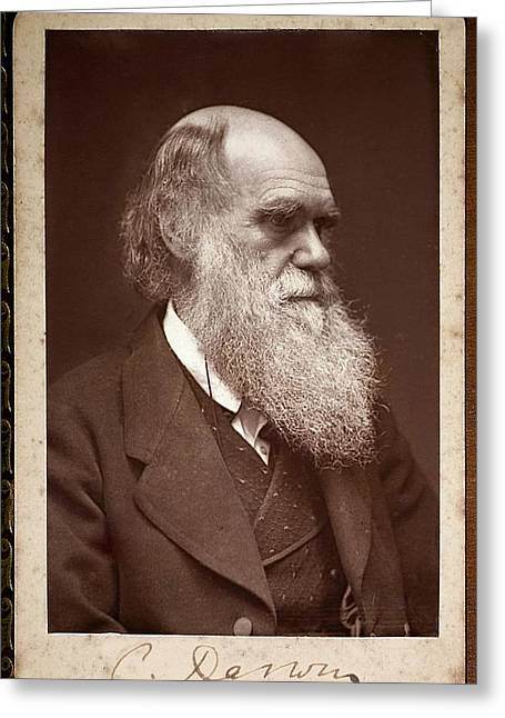 Charles Darwin Greeting Card