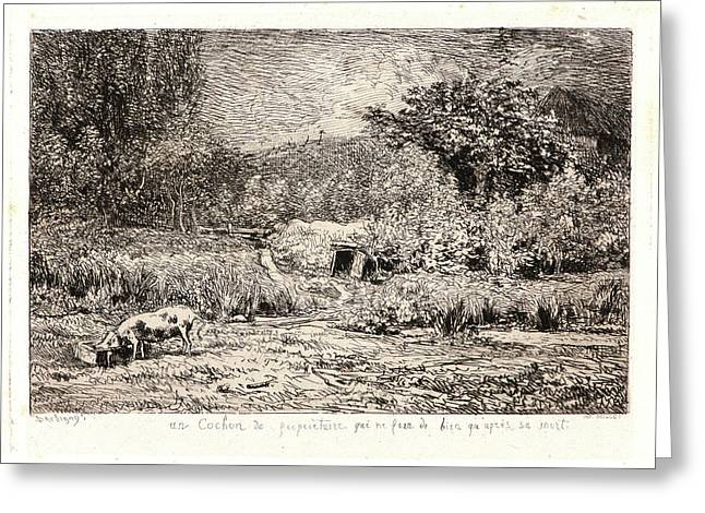 Charles François Daubigny French, 1817 - 1878. Pig In An Greeting Card by Litz Collection