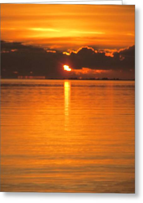 Greeting Card featuring the photograph Charleston Morning Sunrise  by Joetta Beauford