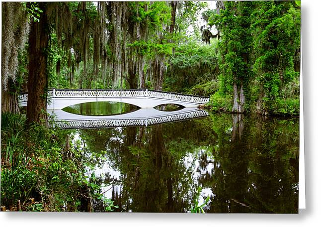 Greeting Card featuring the photograph Charleston Sc Bridge by John Johnson