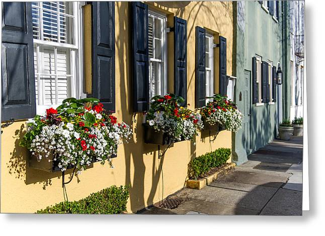 Charleston Sc Rainbow Row Greeting Card
