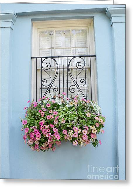 Charleston Window Box Flower Photography - Charleston Rainbow Row Blue Aqua Dreamy Flower Window Box Greeting Card by Kathy Fornal