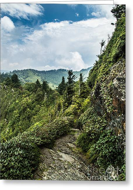 Greeting Card featuring the photograph Charlies Bunion Trail by Debbie Green