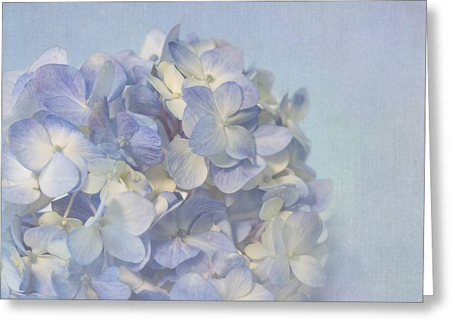Charming Blue Greeting Card