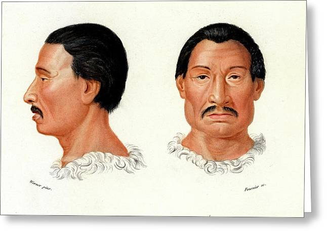 Charrua Man Greeting Card by Collection Abecasis