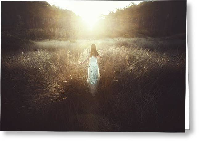 Chase The Sun Greeting Card by Terry F