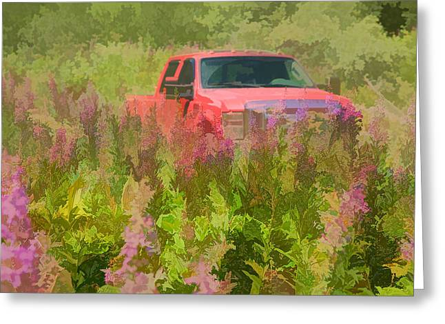 Chasing Wildflowers Greeting Card