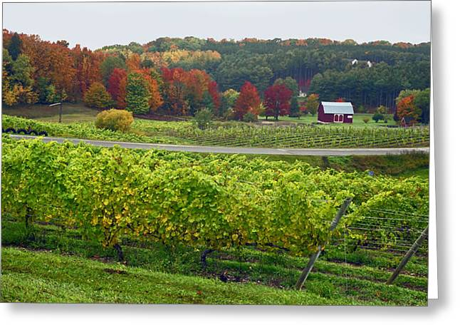 Chateau Chantal In Autumn 2014 Greeting Card
