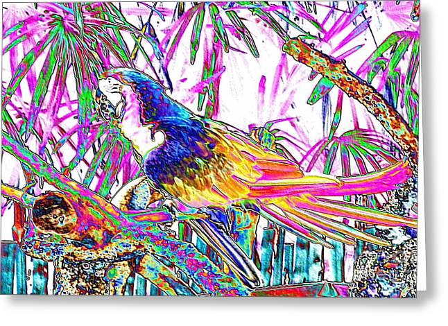 Cheerful Parrot. Colorful Art Collection. Promotion - August 2015 Greeting Card