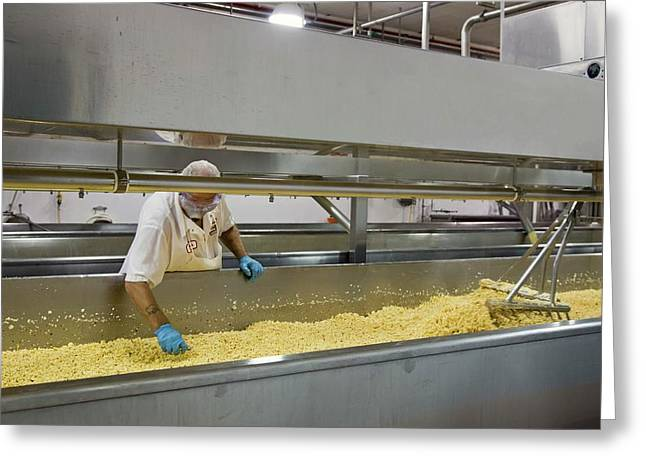 Cheese Factory Greeting Card by Jim West