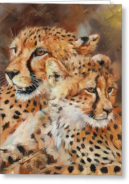Cheetah And Cub Greeting Card by David Stribbling