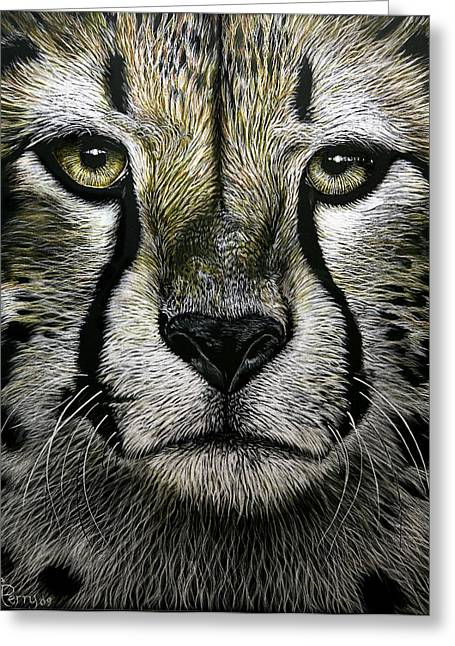Cheetah  Greeting Card by Chris Perry